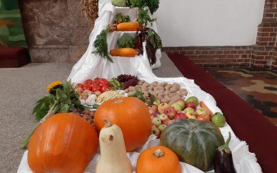 Dziękczynne Święto Żniw – nasze podziękowanie za chleb powszedni